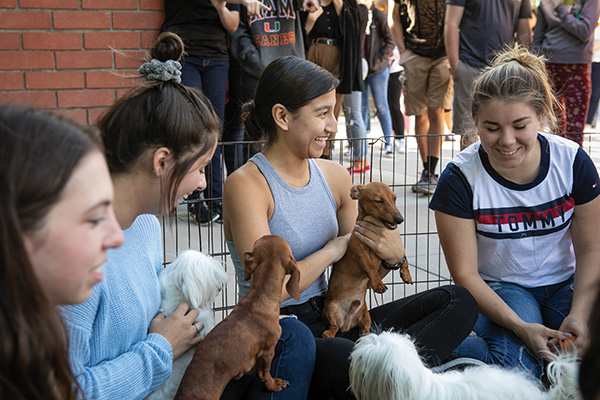 Outside the Student Union on Nov. 14, Valeria Cruz (center) and friends share the vibes brought to campus by a Torrance-based puppy party company. (Photo by Brian Stethem '84)