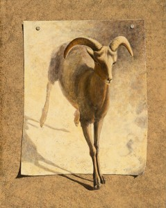 3rd 26054-the_great_escape_i_-_desert_bighorn_sheep-9302018202-18959